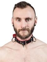 Mister B Slave Collar 4 D-Rings Grey